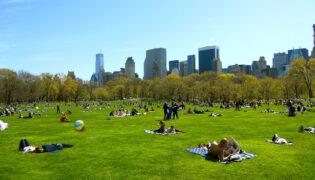 Peaceful New York park
