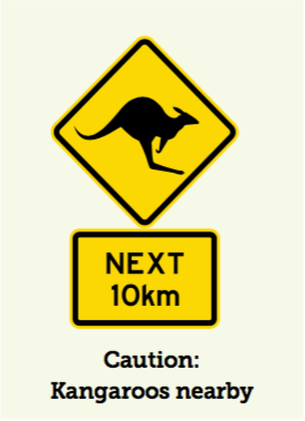 Kangaroos Nearby