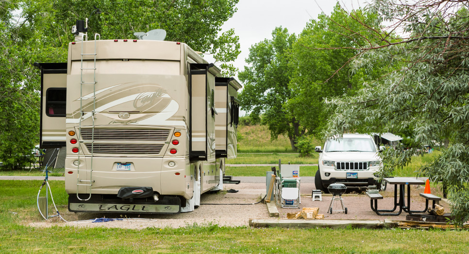 Mosman camper accidentally experiences nature while traveling between car and caravan